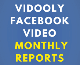 Facebook Monthly Report